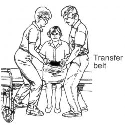 Transfer-Minimum-2-Assist-Transfer-Belt
